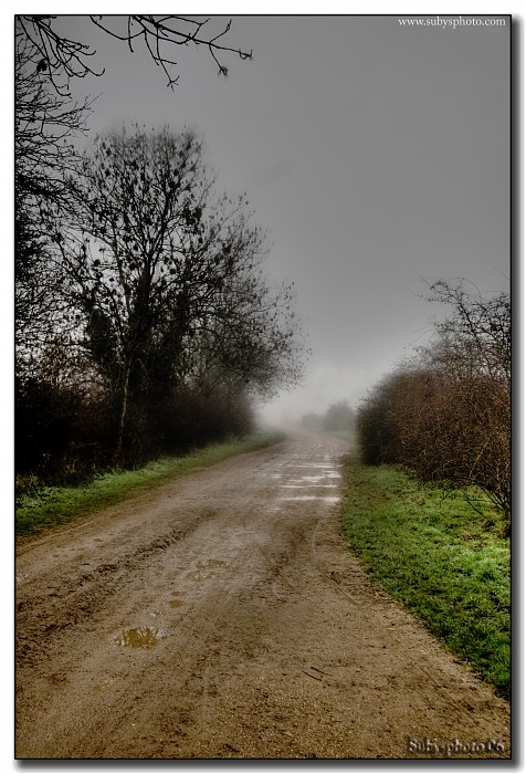 photoblog image Misty Road
