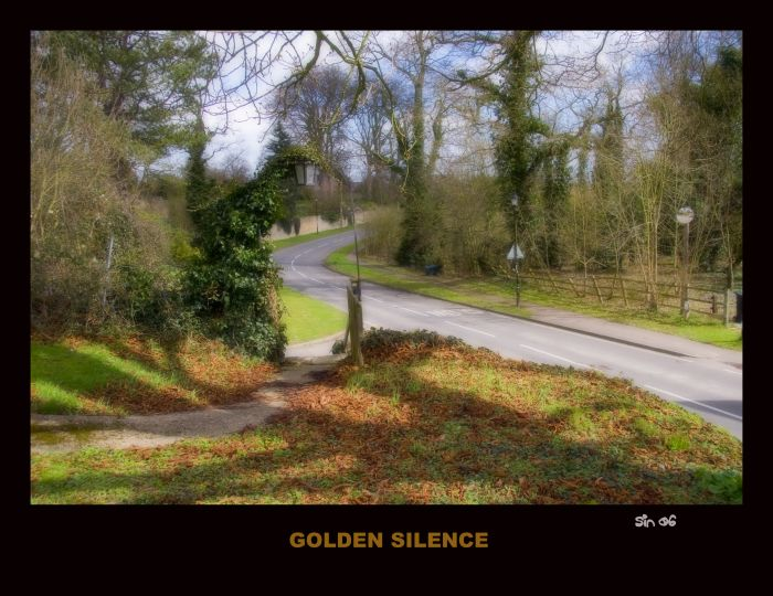 photoblog image GOLDEN SILENCE